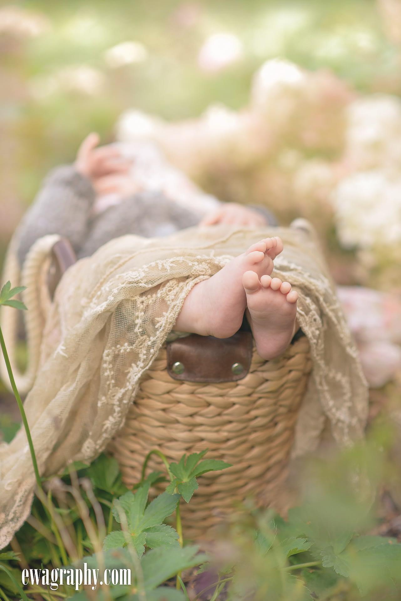 sesja-niemowlęca-stopy-1-of-1