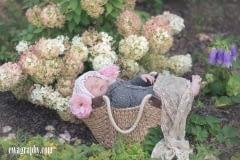 sesja-niemowleca-w-kwiatach-1-of-1